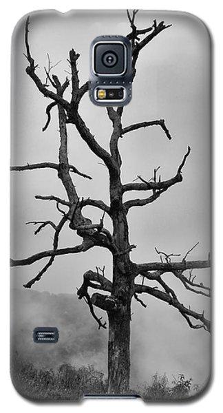 Ghost Tree Galaxy S5 Case