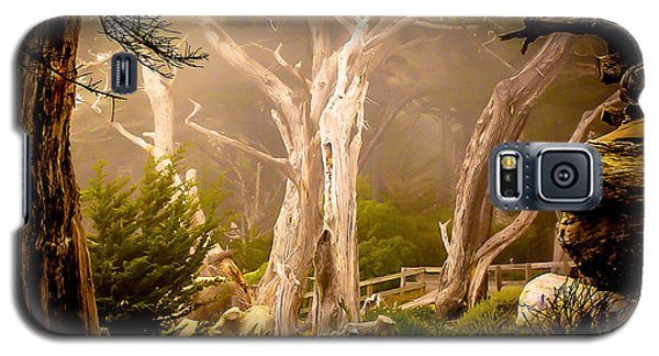 Ghost Tree Galaxy S5 Case by TK Goforth