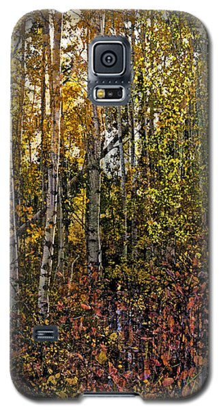 Ghosts Of A Quaking Aspen Galaxy S5 Case