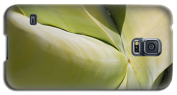 Giant Agave Abstract 9 Galaxy S5 Case