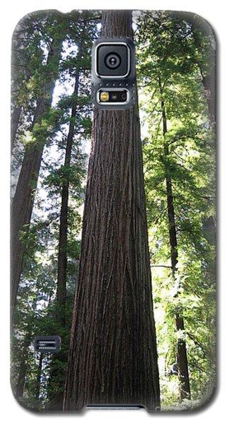 Giant Galaxy S5 Case