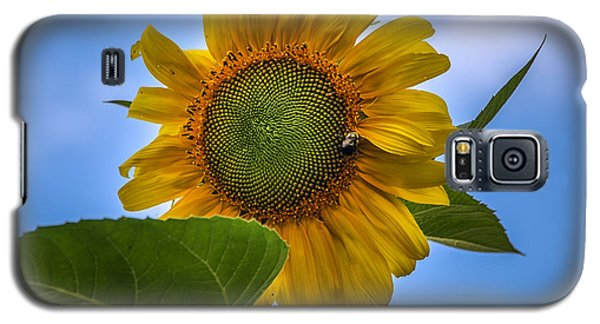 Galaxy S5 Case featuring the photograph Giant Sunflower by Phil Abrams