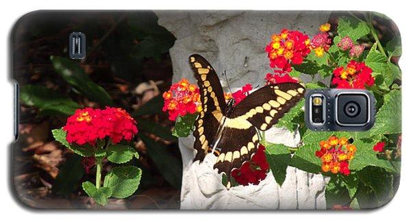 Giant Swallowtail On Lantana Galaxy S5 Case