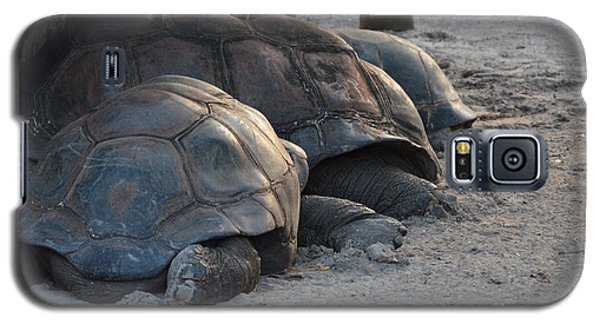 Galaxy S5 Case featuring the photograph Giant Tortise by Robert Meanor