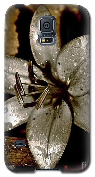 Galaxy S5 Case featuring the photograph Gilded  Lilies 2 by Linda Bianic