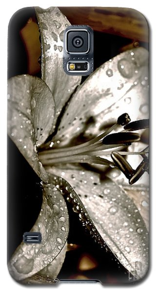 Galaxy S5 Case featuring the photograph Gilded Lilies 3 by Linda Bianic