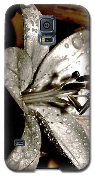 Gilded Lilies 3 Galaxy S5 Case by Linda Bianic