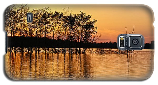 Galaxy S5 Case featuring the photograph Gilded Sunset by Julie Andel