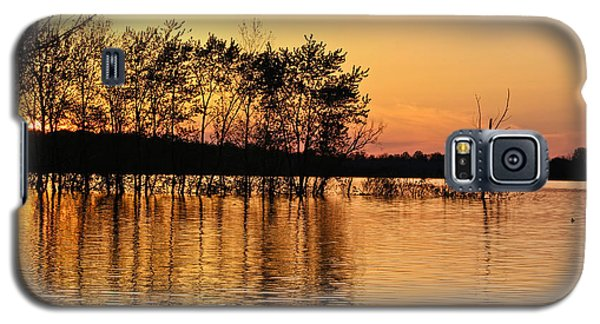 Gilded Sunset Galaxy S5 Case by Julie Andel