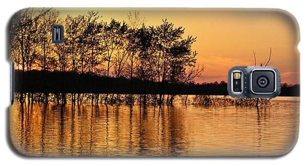 Gilded Sunset Galaxy S5 Case