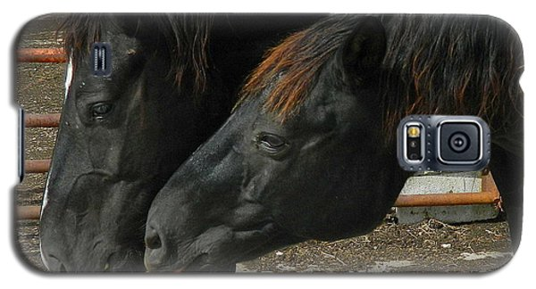 Galaxy S5 Case featuring the photograph Gimme That Apple by Kathy Barney