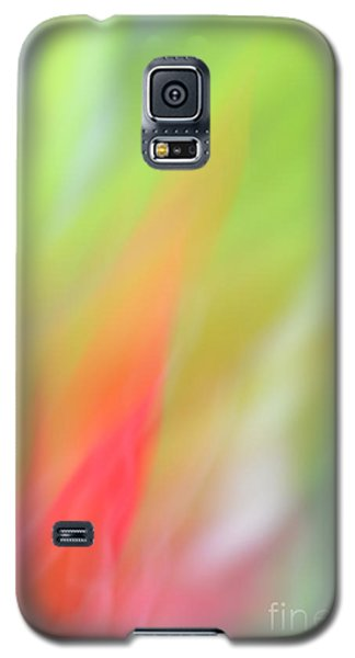 Ginger Flower Abstract 2 Galaxy S5 Case by Catherine Lau