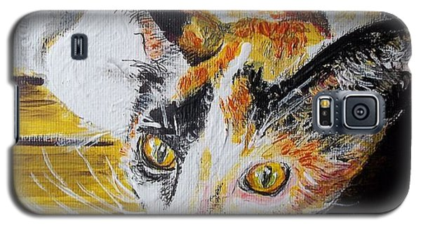 Ginger Stray Cat Galaxy S5 Case