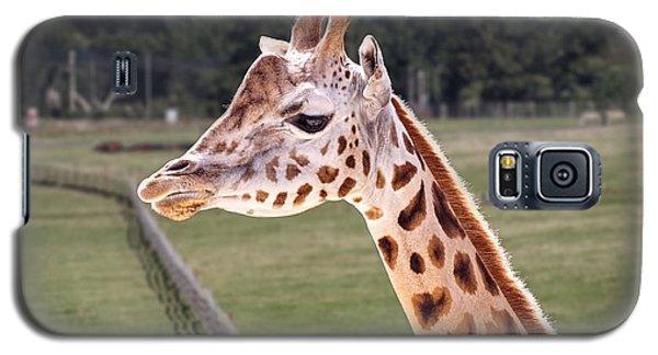 Giraffe 02 Galaxy S5 Case