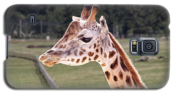 Giraffe 02 Galaxy S5 Case