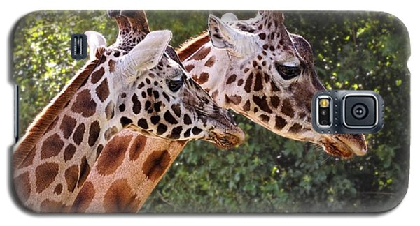 Giraffe 03 Galaxy S5 Case