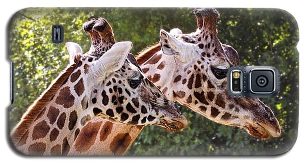 Giraffe 03 Galaxy S5 Case