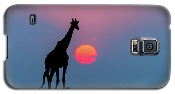 Giraffe At Sunset Chobe Np Botswana Galaxy S5 Case