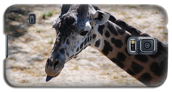 Galaxy S5 Case featuring the photograph Giraffe Close-up by Mark McReynolds