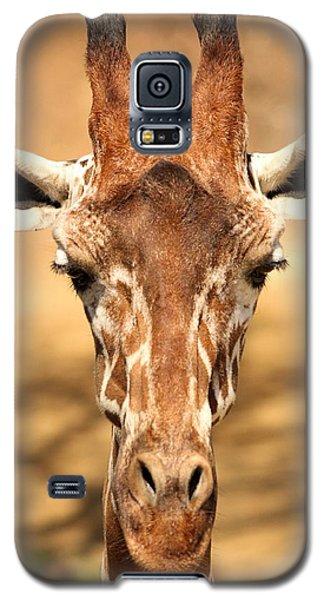 Galaxy S5 Case featuring the photograph Giraffe by Elizabeth Budd