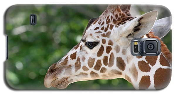 Giraffe Galaxy S5 Case