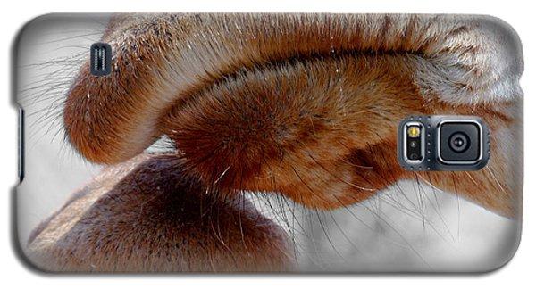 Giraffe Lips Galaxy S5 Case