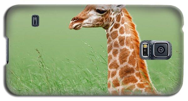 Giraffe Lying In Grass Galaxy S5 Case