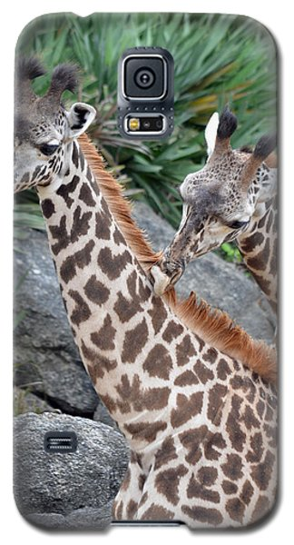Giraffe Massage Galaxy S5 Case