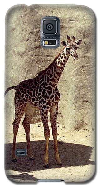 Galaxy S5 Case featuring the photograph Giraffe by Philomena Zito