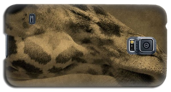 Giraffe Portait Galaxy S5 Case by Dan Sproul