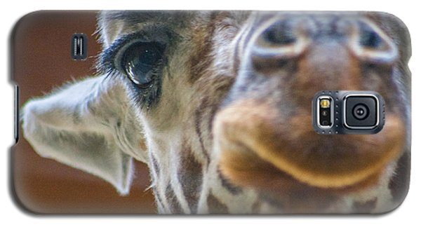 Giraffe Portrait Galaxy S5 Case by Dawn Romine