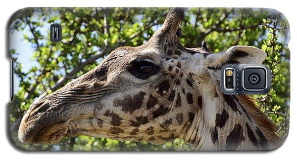 Giraffe Profile Galaxy S5 Case