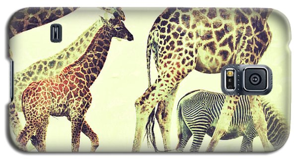 Galaxy S5 Case featuring the photograph Giraffes And A Zebra In The Mist by Nick  Biemans