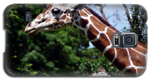 Galaxy S5 Case featuring the photograph Giraffes Coming And Going by Tom Brickhouse