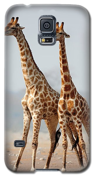 Giraffes Standing Together Galaxy S5 Case by Johan Swanepoel