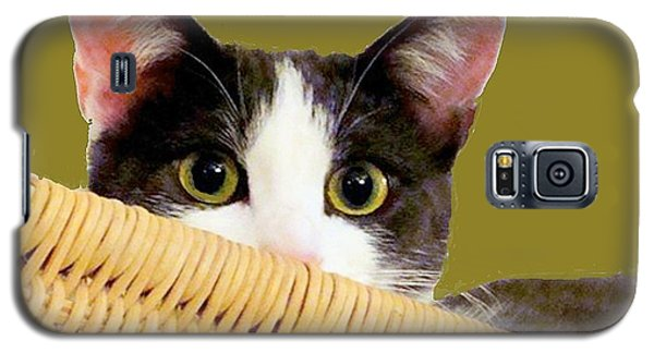 Galaxy S5 Case featuring the photograph Girlie Cat  by Janette Boyd
