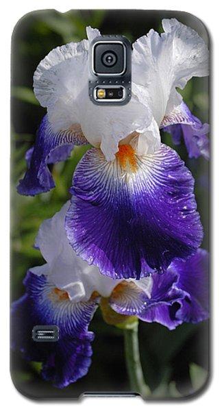 Giverny Iris Galaxy S5 Case