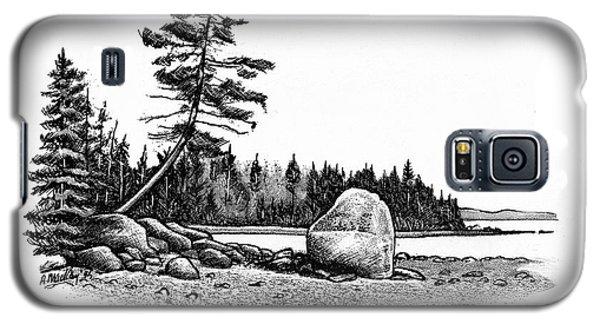 Glacial Erratic Galaxy S5 Case