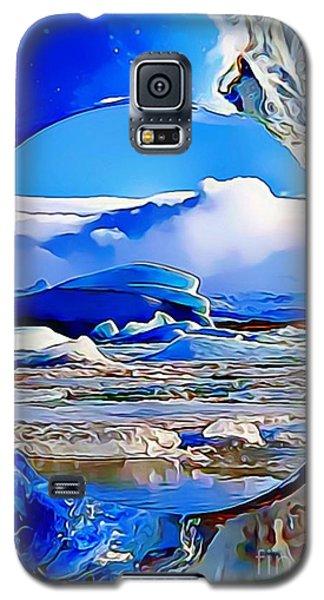 Glacier Galaxy S5 Case