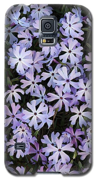 Galaxy S5 Case featuring the photograph Glade Phlox by Daniel Reed