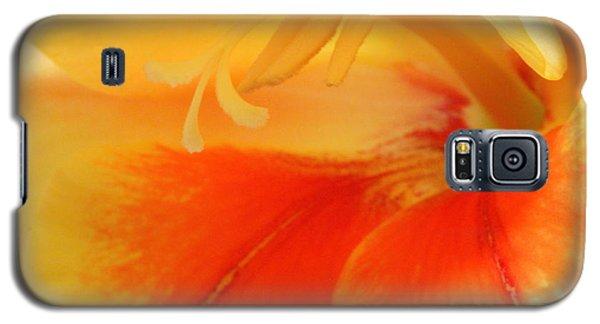 Gladiola Hello Galaxy S5 Case by Deborah  Crew-Johnson