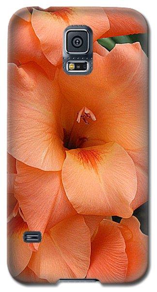 Gladiola In Peach Galaxy S5 Case