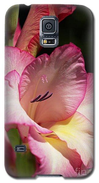 Gladiolus In Pink Galaxy S5 Case