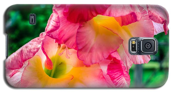 Galaxy S5 Case featuring the photograph Gladiolus by Rob Sellers