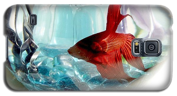 Galaxy S5 Case featuring the photograph Glamor Rudy by Valerie Reeves