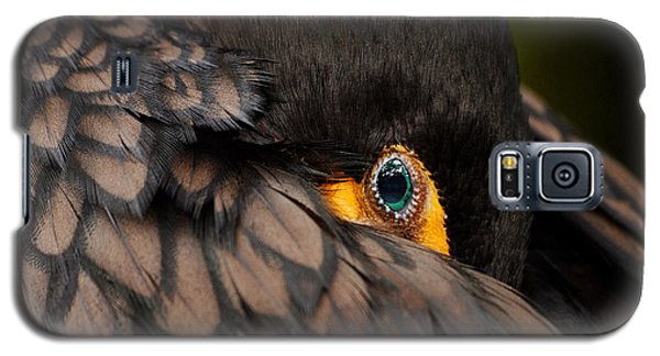 Glancing Galaxy S5 Case by Lorenzo Cassina