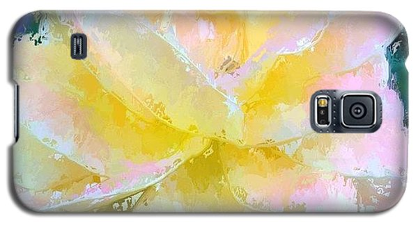 Glazed Pale Pink And Yellow Rose  Galaxy S5 Case by Anna Porter