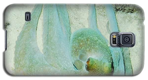 Galaxy S5 Case featuring the photograph Gliding Reef Octopus by Amy McDaniel
