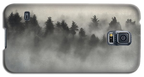 Glimpse Of Mist And Trees Galaxy S5 Case by Carol Leigh