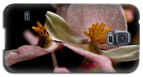 Galaxy S5 Case featuring the photograph Glisten by Geri Glavis